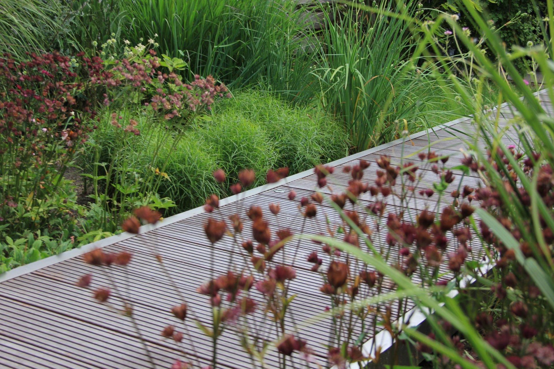 Jeroen Hamers - Tuinontwerp en beplanting Tiel