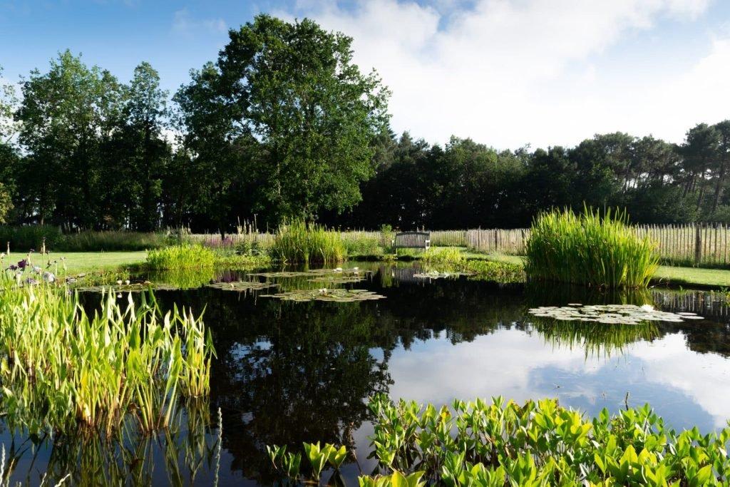 Tuinontwerp vijver Jeroen Hamers
